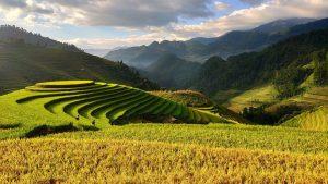 Vietnam-sapa