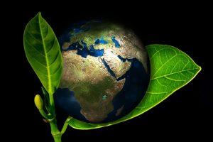 événement plus écologique